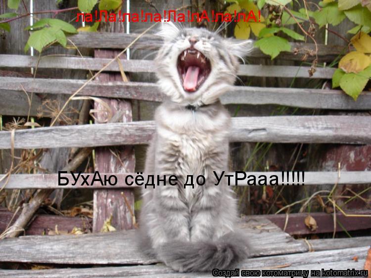 Котоматрица: ла!Ла!ла!ла!Ла!лА!ла!лА! БУхАю сёдне до УтРааа!!!!!