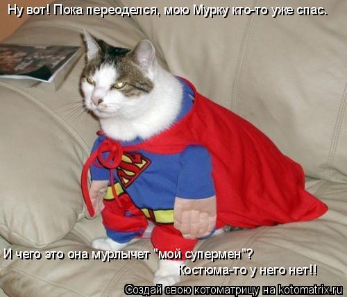 """Котоматрица: Ну вот! Пока переоделся, мою Мурку кто-то уже спас. И чего это она мурлычет """"мой супермен""""?  Костюма-то у него нет!!"""