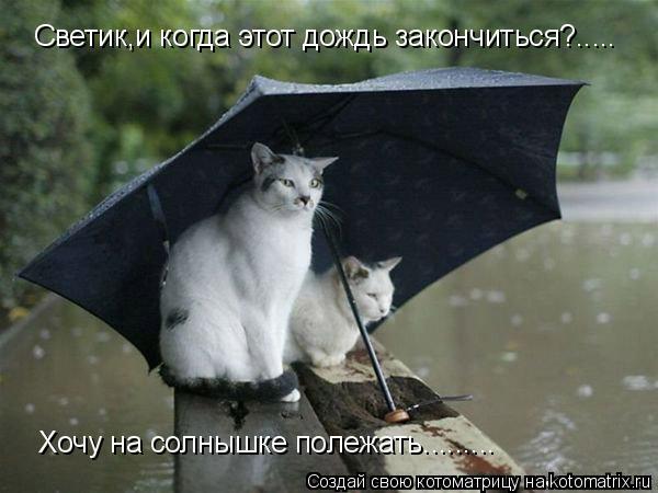 Котоматрица: Светик,и когда этот дождь закончиться?..... Хочу на солнышке полежать.........