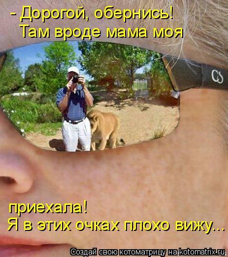 Котоматрица: - Дорогой, обернись! Там вроде мама моя  Я в этих очках плохо вижу... приехала!