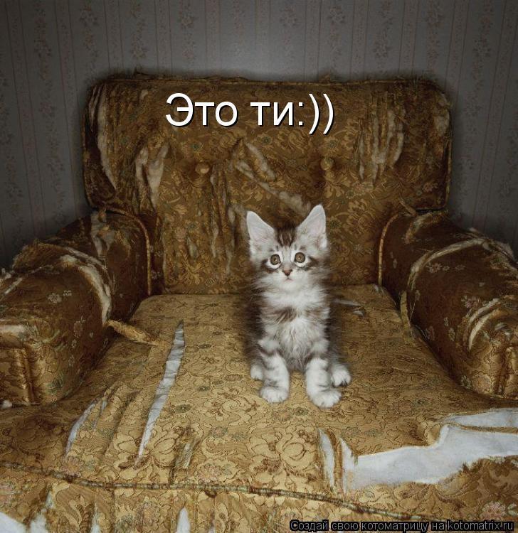 Котоматрица: Это ти:))