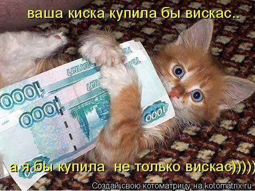 Котоматрица: ваша киска купила бы вискас.. а я бы купила  не только вискас)))))