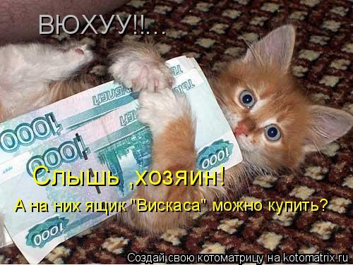 "Котоматрица: ВЮХУУ!!... Слышь ,хозяин! А на них ящик ""Вискаса"" можно купить?"