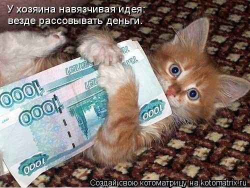 Котоматрица: У хозяина навязчивая идея: везде рассовывать деньги.