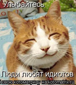 Котоматрица: Улыбайтесь Люди любят идиотов