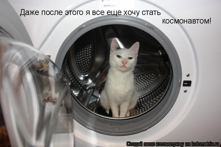 Котоматрица: Даже после этого я все еще хочу стать космонавтом!