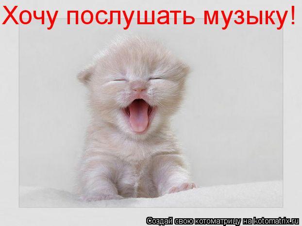 Котоматрица: Хочу послушать музыку!