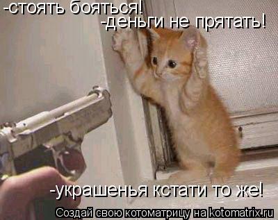 Котоматрица: -стоять бояться!  -деньги не прятать! -украшенья кстати то же!