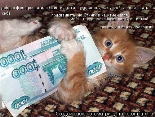 Котоматрица: добрая фея превратила Стинги в кота, будет знать, как у фей  деньги брать и себе  присваивать. но Стинги и не изменился. себе -моё! - глухо прои