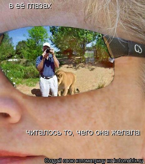Котоматрица: в её глазах   читалось то, чего она желала