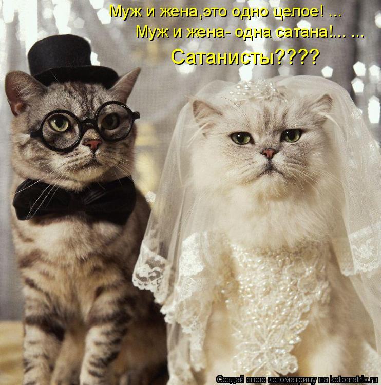 Котоматрица: Муж и жена,это одно целое! ... Муж и жена- одна сатана!... ... Сатанисты????