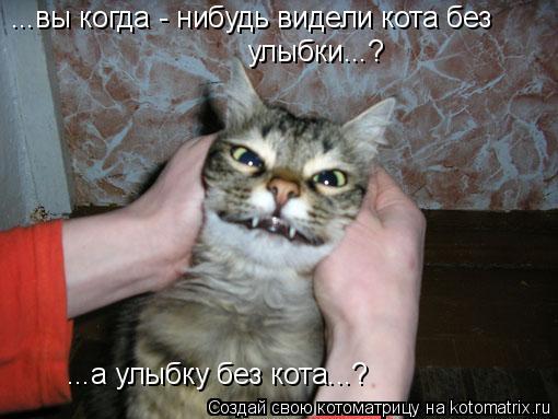 Котоматрица: ...вы когда - нибудь видели кота без улыбки...? ...а улыбку без кота...?