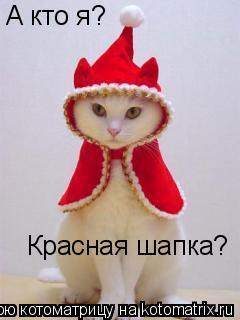 Котоматрица: А кто я? Красная шапка?
