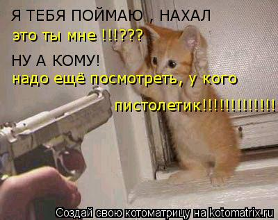 Котоматрица: Я ТЕБЯ ПОЙМАЮ , НАХАЛ  это ты мне !!!??? НУ А КОМУ! надо ещё посмотреть, у кого  пистолетик!!!!!!!!!!!!!