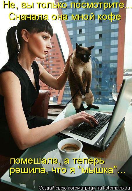 """Котоматрица: Не, вы только посмотрите... Сначала она мной кофе помешала, а теперь решила, что я """"мышка""""..."""