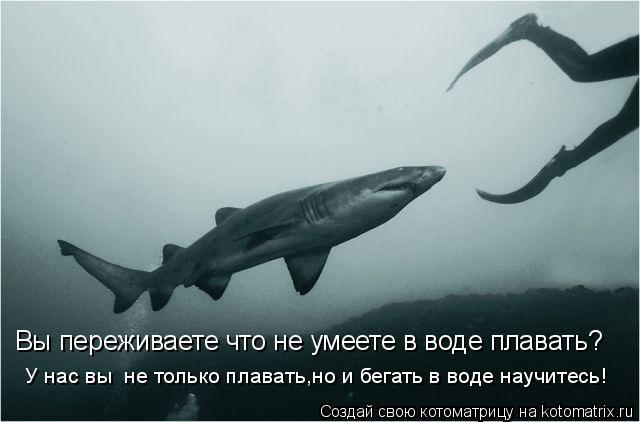 Котоматрица: Вы переживаете что не умеете в воде плавать? У нас вы  не только плавать,но и бегать в воде научитесь!