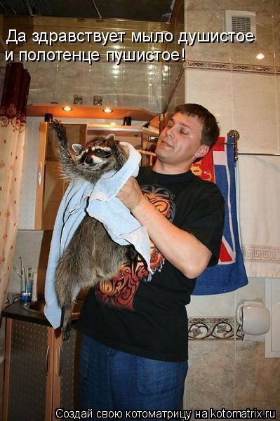 Котоматрица: Да здравствует мыло душистое  и полотенце пушистое!