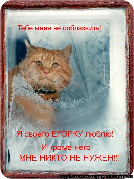 Котоматрица: Тебе меня не соблазнить!  Я своего ЕГОРКУ люблю!  И кроме него МНЕ НИКТО НЕ НУЖЕН!!!