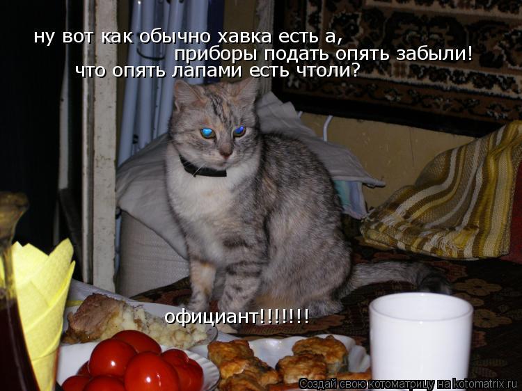 Котоматрица: ну вот как обычно хавка есть а  , приборы подать опять забыли! что опять лапами есть чтоли? официант!!!!!!!