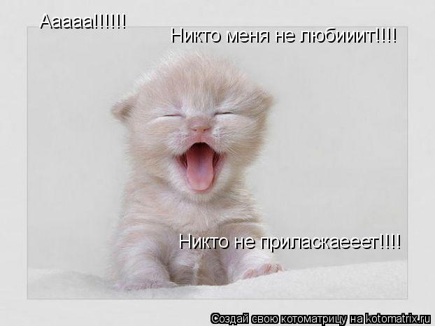 Котоматрица: Ааааа!!!!!! Никто меня не любииит!!!! Никто не приласкаееет!!!!