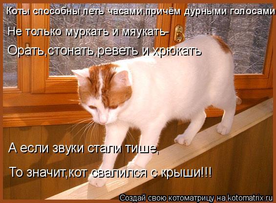 Котоматрица: Коты способны петь часами,причём дурными голосами Не только муркать и мяукать- Орать,стонать,реветь и хрюкать А если звуки стали тише, То зн