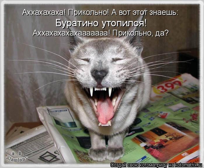 Котоматрица: Аххахахаха! Прикольно! А вот этот знаешь: Буратино утопился! Аххахахахахааааааа! Прикольно, да?