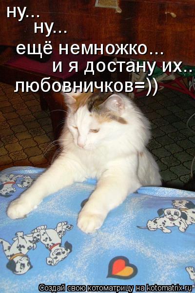 Котоматрица: ну... ну... ещё немножко... и я достану их.. любовничков=))