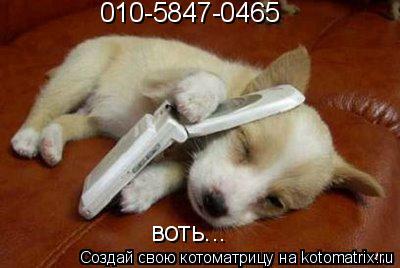 Котоматрица: 010-5847-0465 воть...