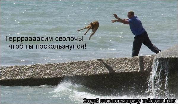 Котоматрица: Геррраааасим,сволочь! чтоб ты поскользнулся!