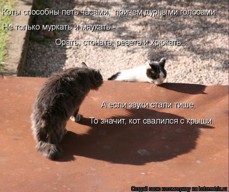 Котоматрица: Коты способны петь часами,  причем дурными голосами:   Не только муркать и мяукать -   Орать, стонать, реветь и хрюкать... А если звуки стали тиш