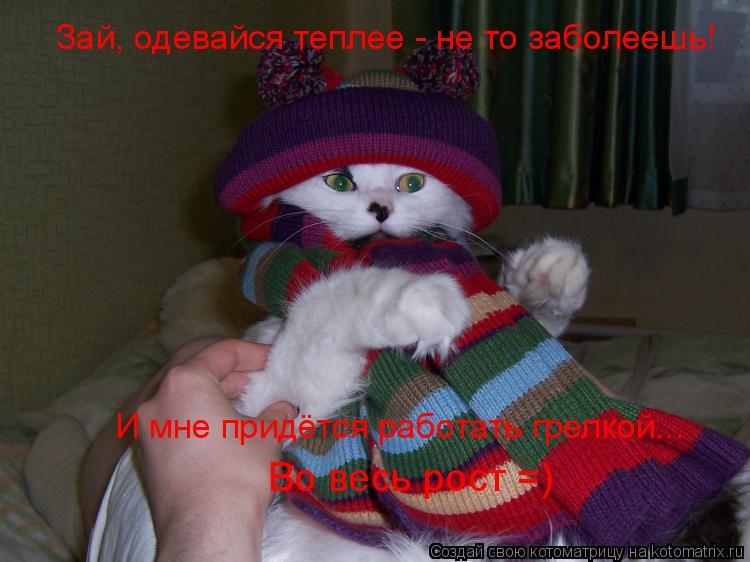 Котоматрица: Зай, одевайся теплее - не то заболеешь! И мне придётся работать грелкой... Во весь рост =)