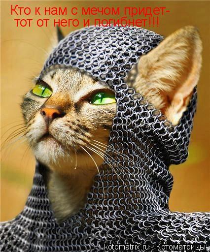 Котоматрица: Кто к нам с мечом придет- тот от него и погибнет!!!