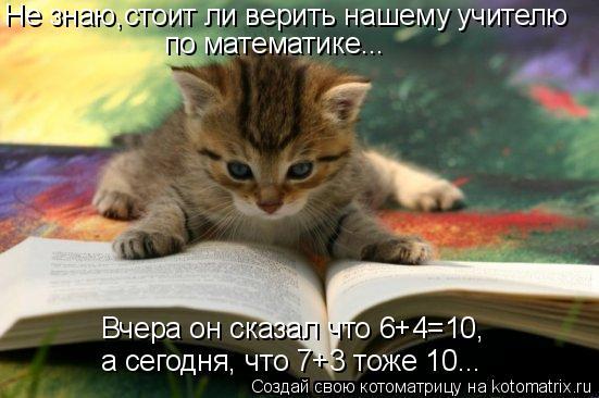 Котоматрица: Не знаю,стоит ли верить нашему учителю  по математике...  Вчера он сказал что 6+4=10,  а сегодня, что 7+3 тоже 10...