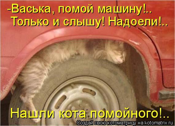 Котоматрица: -Васька, помой машину!.. Только и слышу! Надоели!.. Нашли кота помойного!..