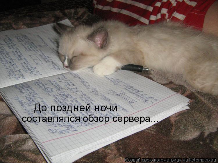 Котоматрица: До поздней ночи  составлялся обзор сервера...