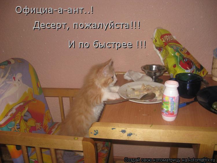 Котоматрица: Официа-а-ант..! Десерт, пожалуйста!!! И по быстрее !!!