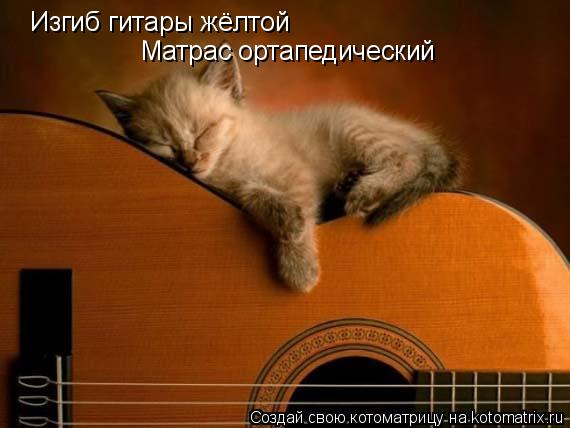 Котоматрица: Изгиб гитары жёлтой  Матрас ортапедический