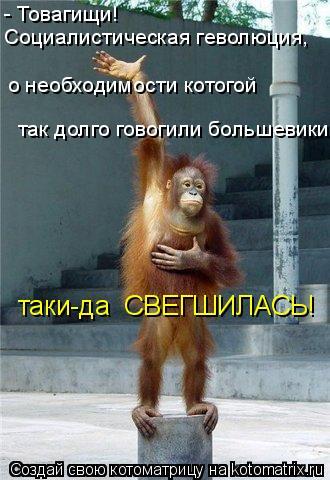 Котоматрица: - Товагищи!  Социалистическая геволюция,  о необходимости котогой так долго говогили большевики, таки-да  СВЕГШИЛАСЬ!