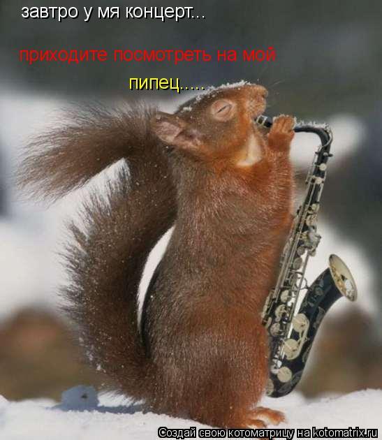 Котоматрица: завтро у мя концерт... приходите посмотреть на мой пипец.....