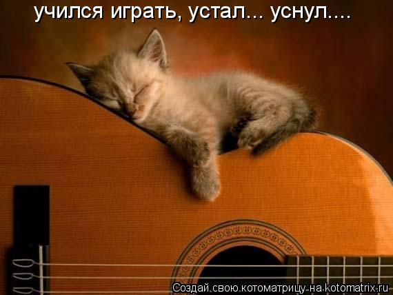 Котоматрица: учился играть, устал... уснул....