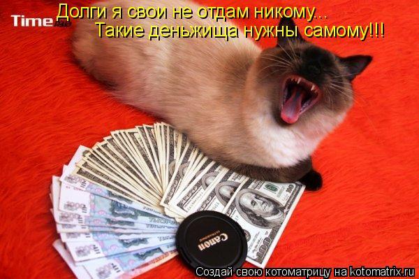 Котоматрица: Долги я свои не отдам никому... Такие деньжища нужны самому!!!