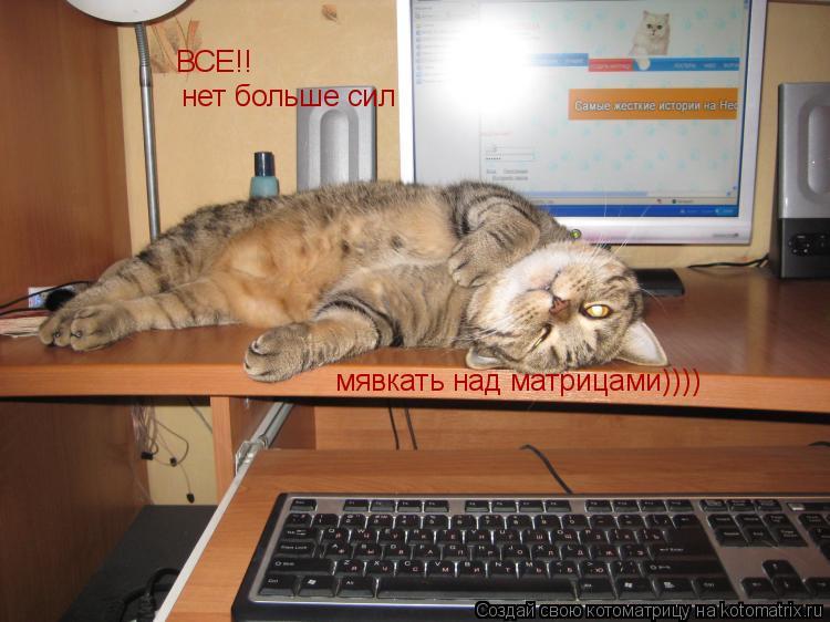 Котоматрица: ВСЕ!! нет больше сил мявкать над матрицами))))