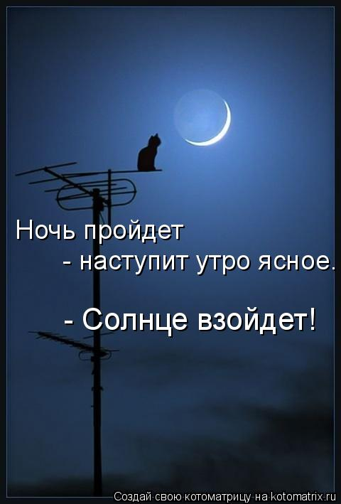 Котоматрица: Ночь пройдет - наступит утро ясное. - Солнце взойдет!