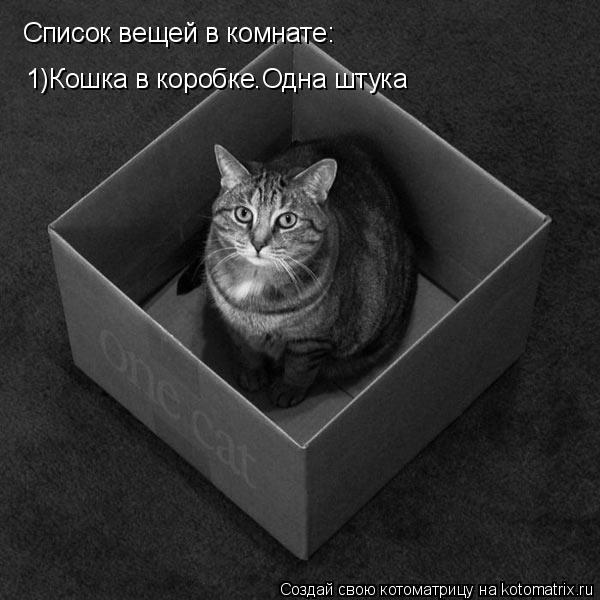 Котоматрица: Список вещей в комнате: 1)Кошка в коробке.Одна штука