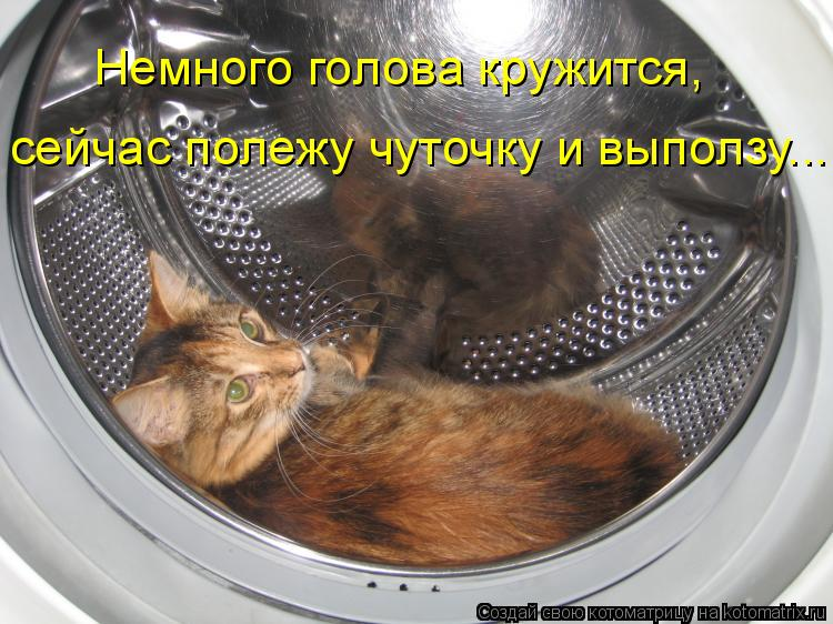 Котоматрица: Немного голова кружится, Немного голова кружится, сейчас полежу чуточку и выползу...