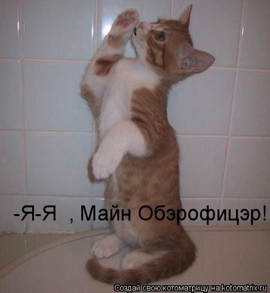 Котоматрица: -Я-Я  , Майн Обэрофицэр! ( ( ( (