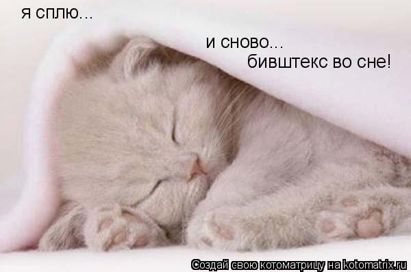 Котоматрица: я сплю... и сново... бивштекс во сне!