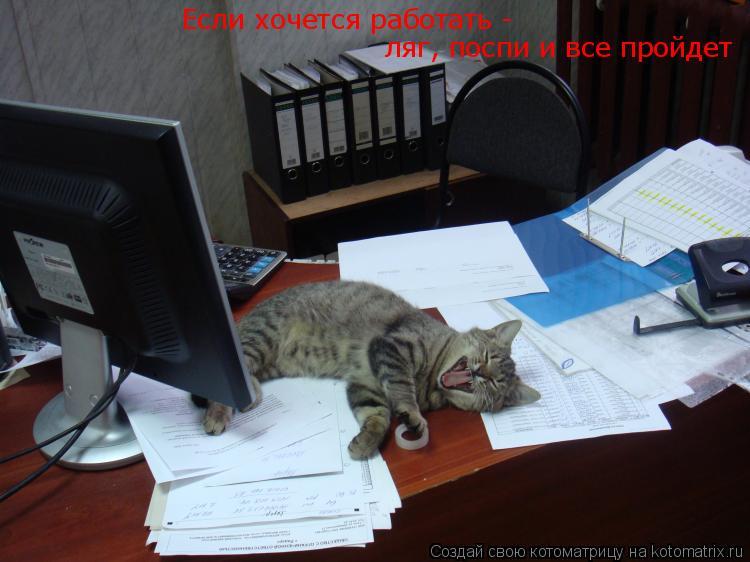 Котоматрица: Если хочется работать -  ляг, поспи и все пройдет