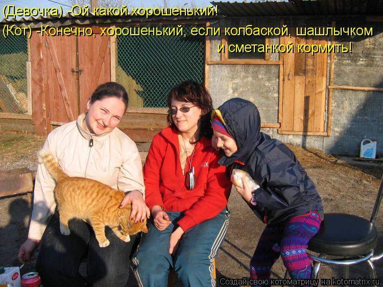 Котоматрица: (Девочка) -Ой какой хорошенький! (Кот) -Конечно, хорошенький, если колбаской, шашлычком и сметанкой кормить!