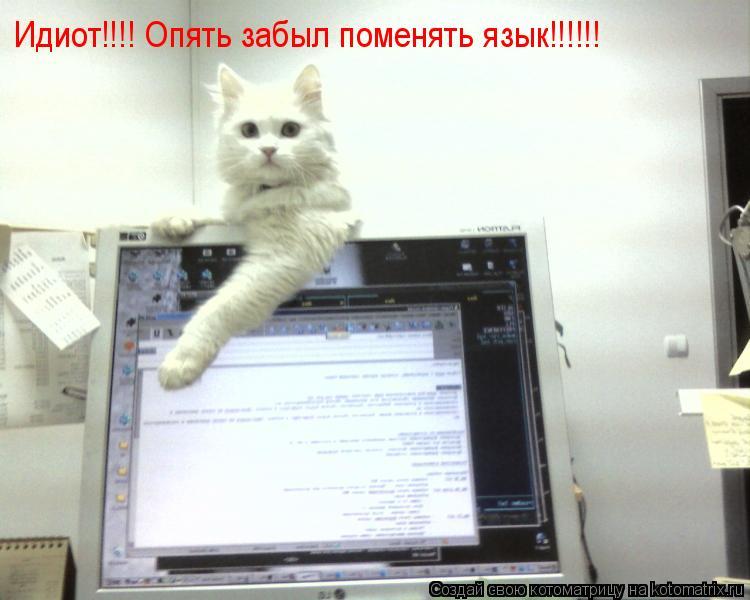 Котоматрица: Идиот!!!! Опять забыл поменять язык!!!!!!